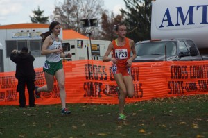 Elmhurst Cross Country Report