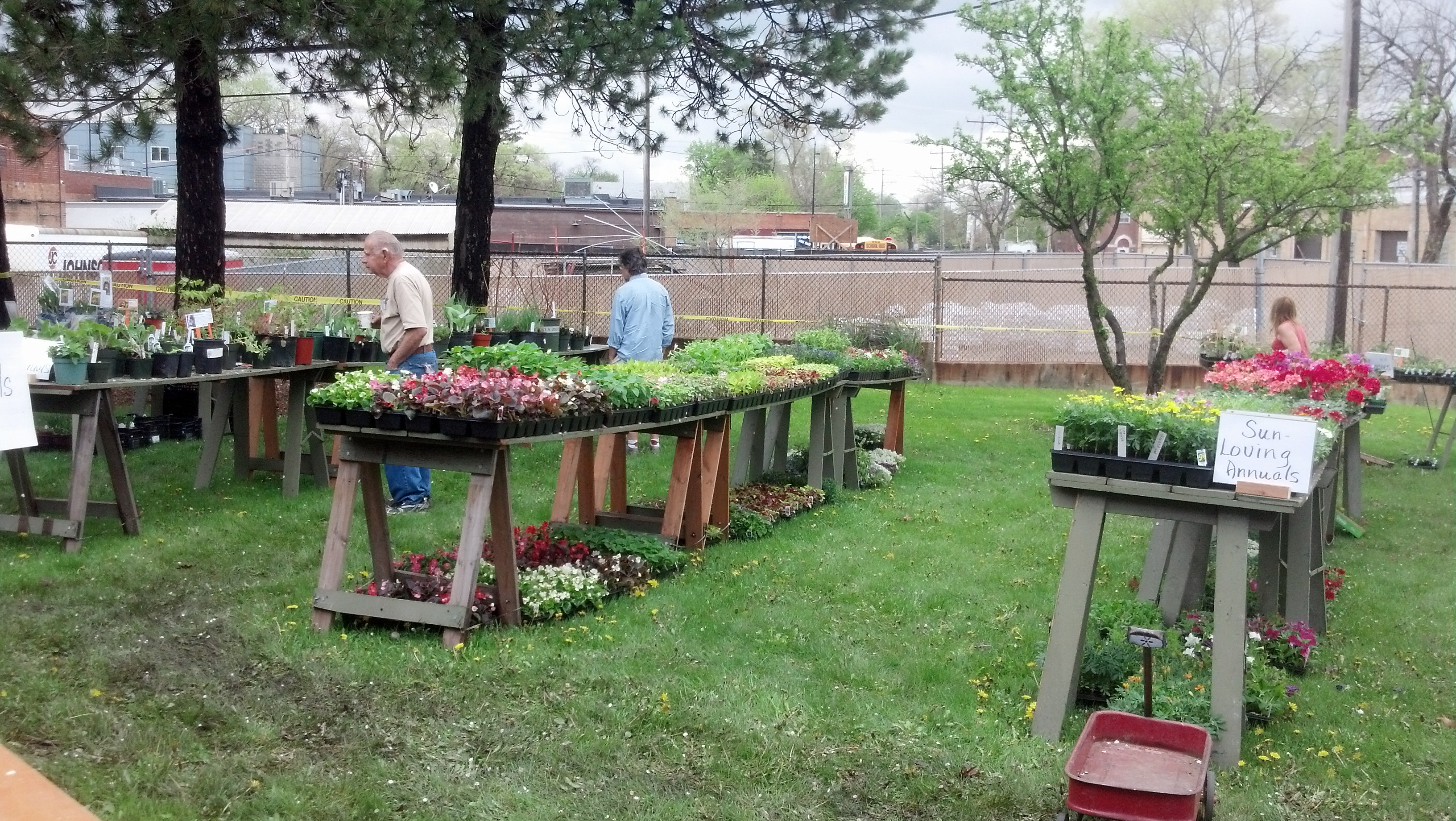 The Independent Newspapers Garden Club Of Villa Park