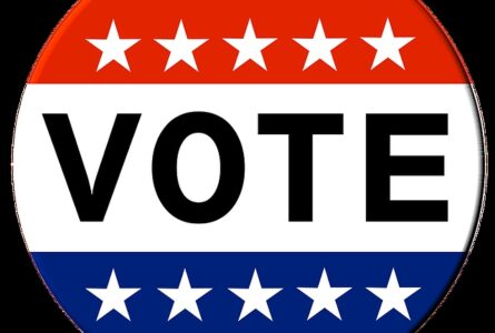 Your local Primary Election Coverage